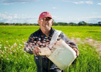 Paraquat Herbicide Lawsuits